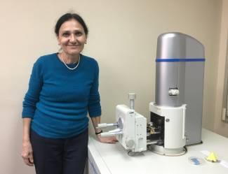 Desarrollo_Biosensores_Optimizar_Producción_Biodisel_Margarita Stoytcheva Zlateva